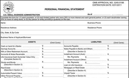 Personal Financial Statement Form