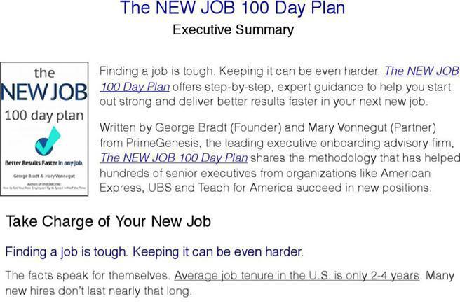 Sample 100 Day Plan Templates