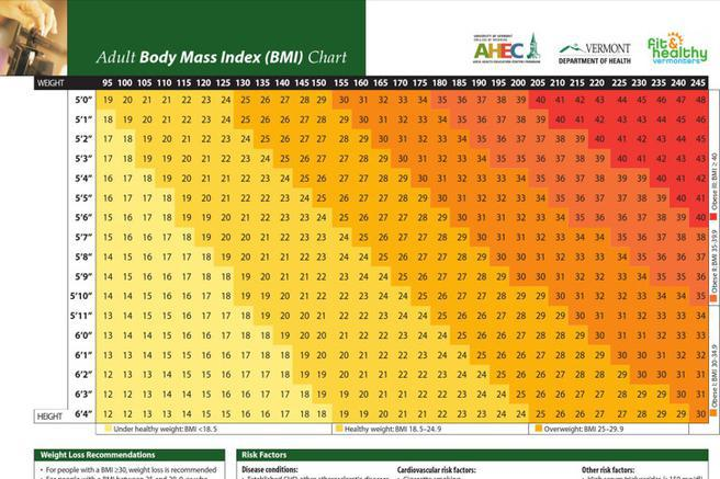 Sample Bmi And Body Fat Charts | Download Free & Premium Templates