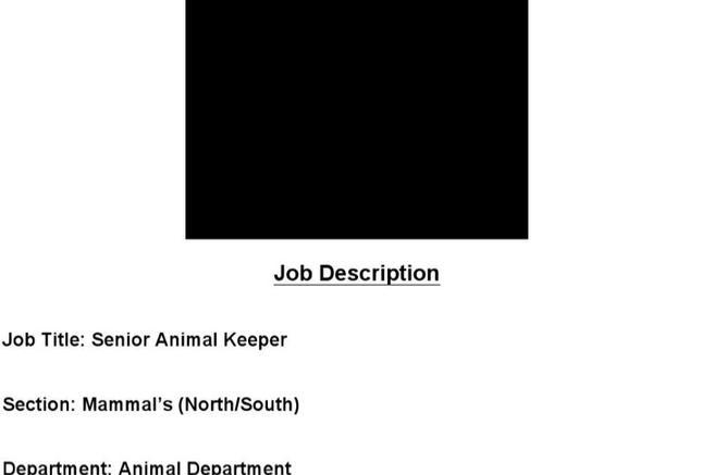 5 zookeeper resume templates download free premium templates