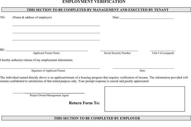Employment Verification Form  Download Free  Premium Templates