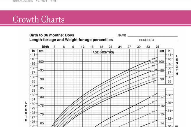 Sample Normal Height And Weight Chart Template