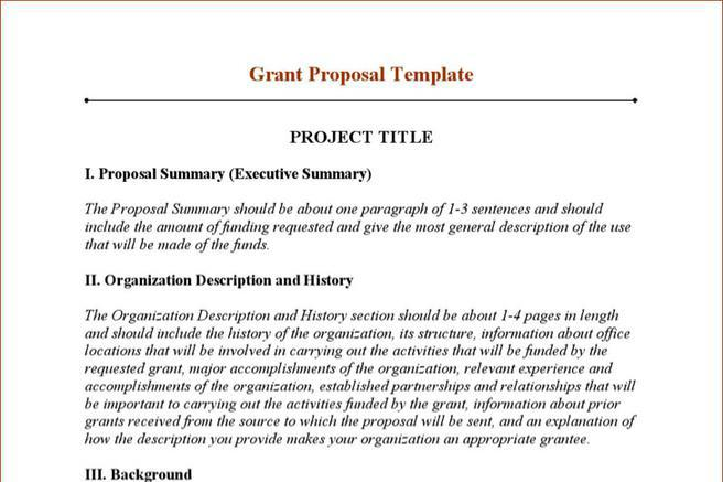 Grant Writing Sample Templates - Costumepartyrun