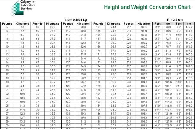 Weight Chart | Download Free & Premium Templates, Forms & Samples