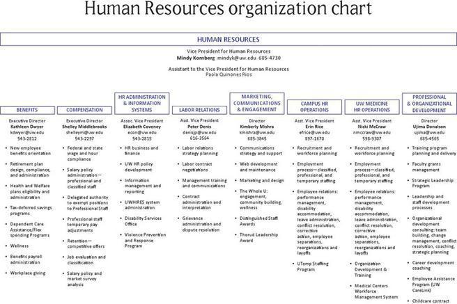 Organizational Chart Template | Download Free & Premium Templates