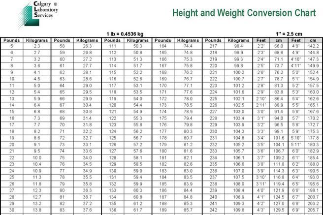 Kg To Lbs Chart Template Height And Weight Conversion Chart Example