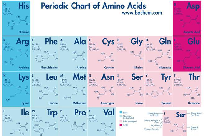 Chemistry Chart | Download Free & Premium Templates, Forms