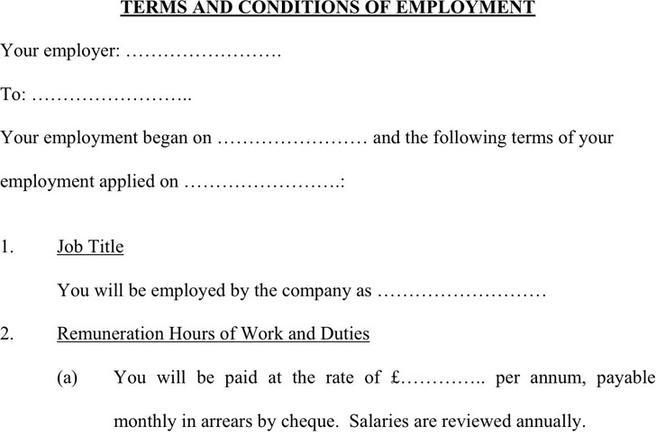 statement of terms and conditions of employment template - corporate document download free premium templates