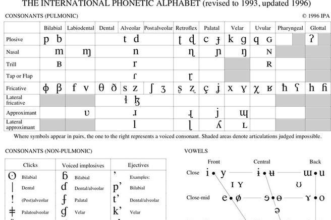 Phonetic Alphabet Chart  Download Free  Premium Templates Forms