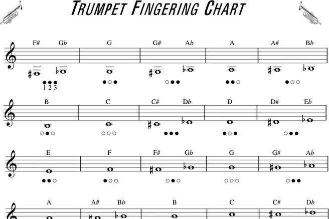 Trumpet Fingering Chart  Download Free  Premium Templates Forms