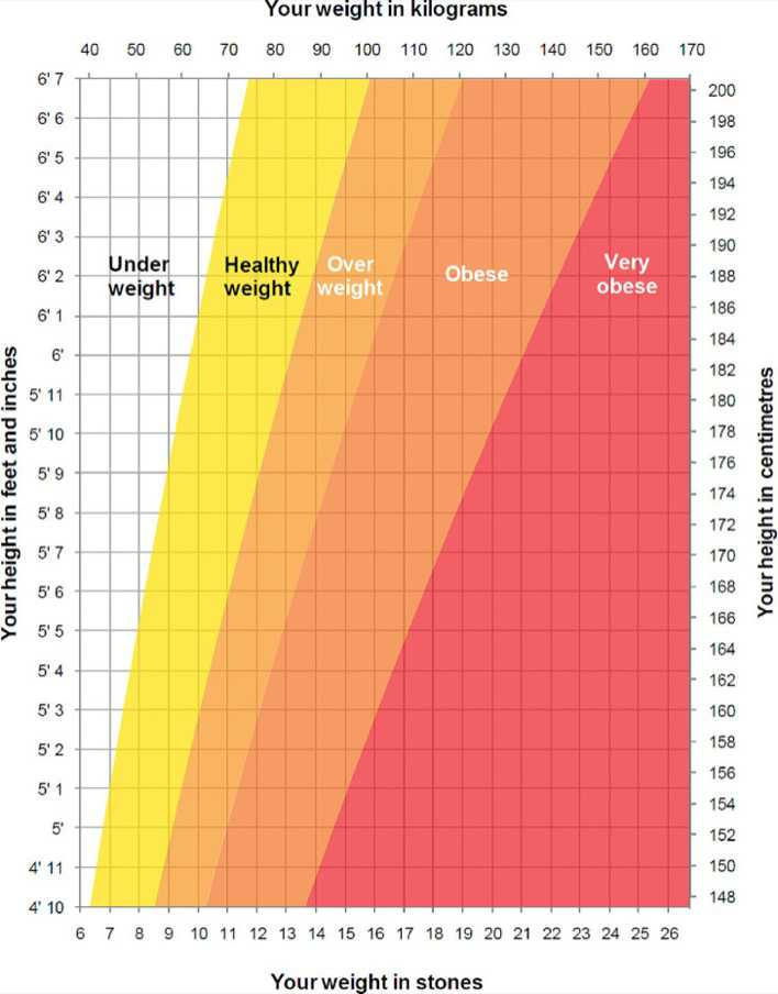 Height And Weight Chart Template For Men Download Free Premium