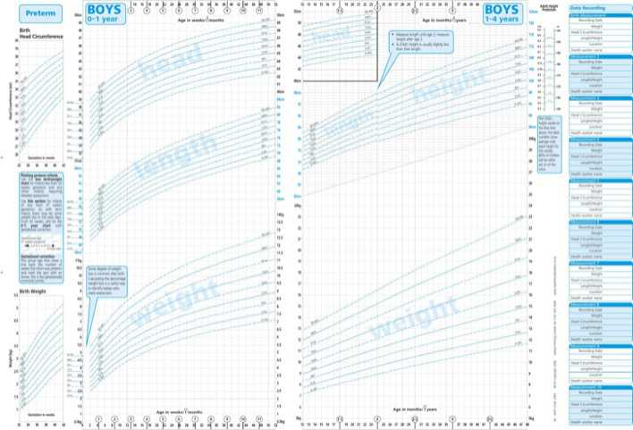 Newborn Baby Growth Chart Template | Download Free & Premium