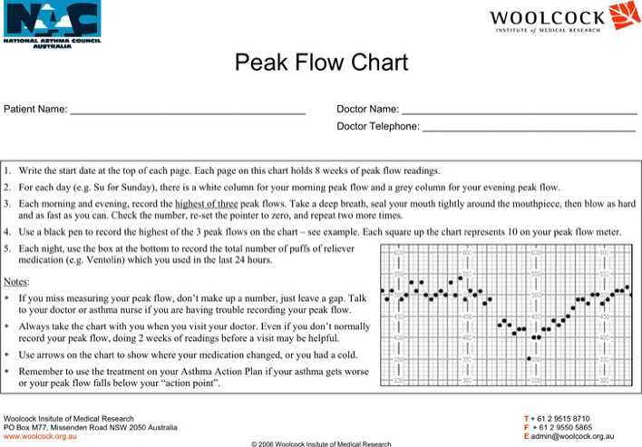 Peak Flow Chart   Download Free  Premium Templates Forms
