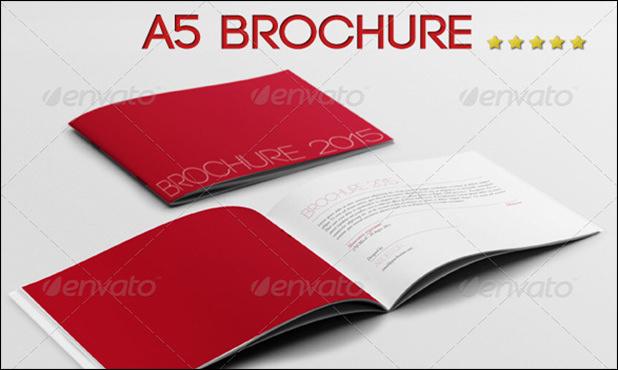 A5 Brochure