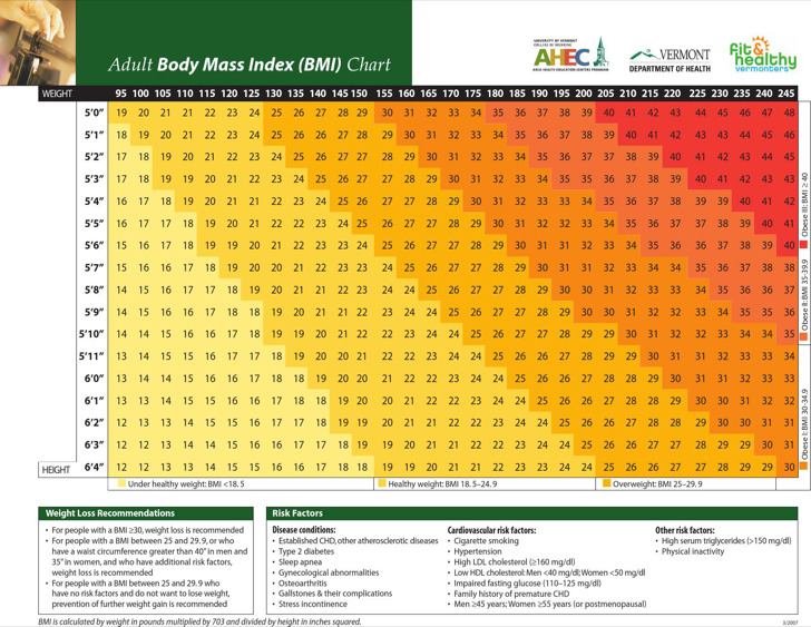 Adult Body Mass Index Chart Example