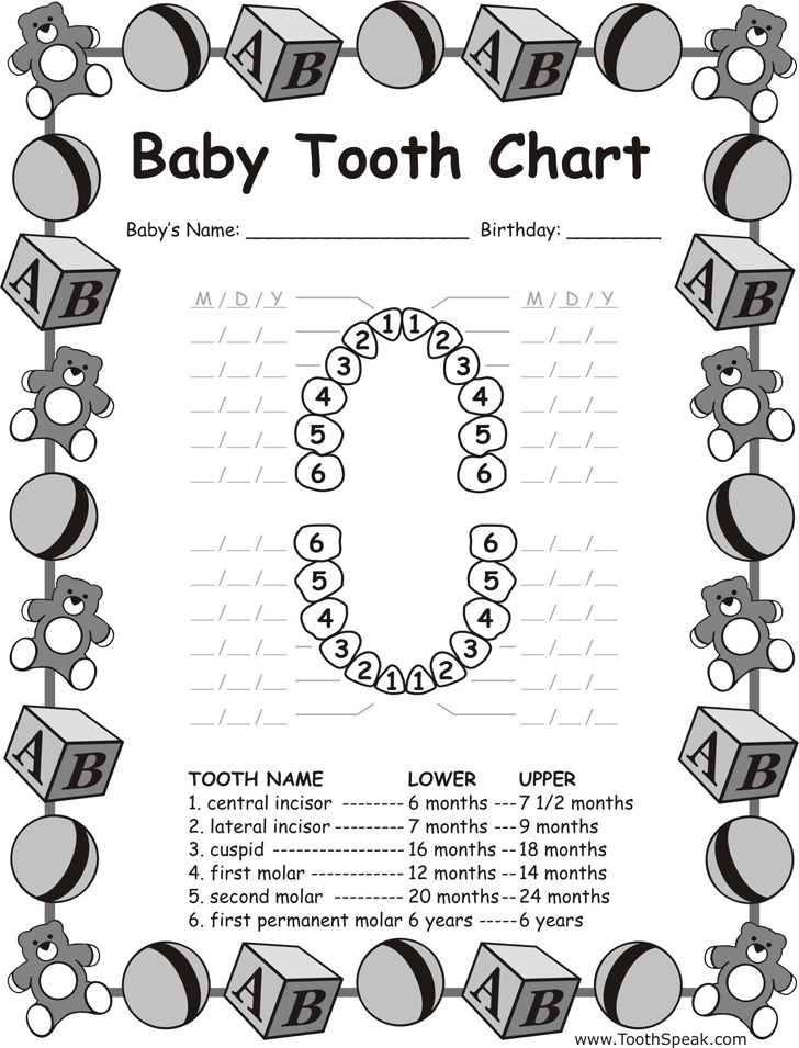 Baby Teeth Chart. Free Baby Tooth Chart Picture Best 25+ Tooth