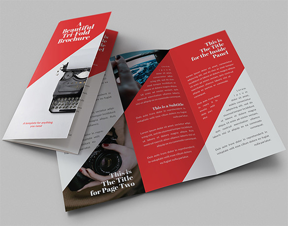 Beautiful Tri-Fold Brochures Leaflet Printing EPS - $9