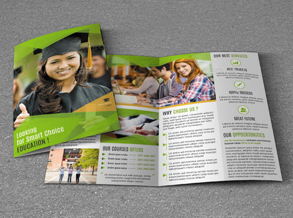 Bifold Brochure for Education