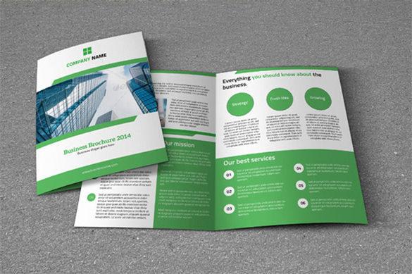 Bifold Business Brochure Business Card