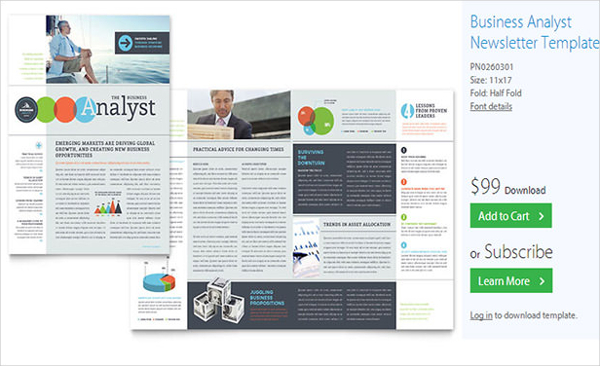 Business Analyst Newsletter Template