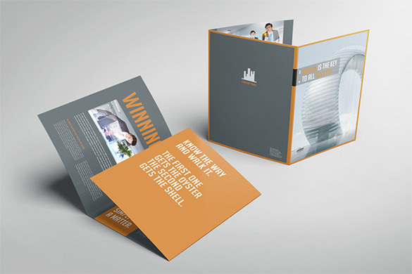 Business Image Trifold Template