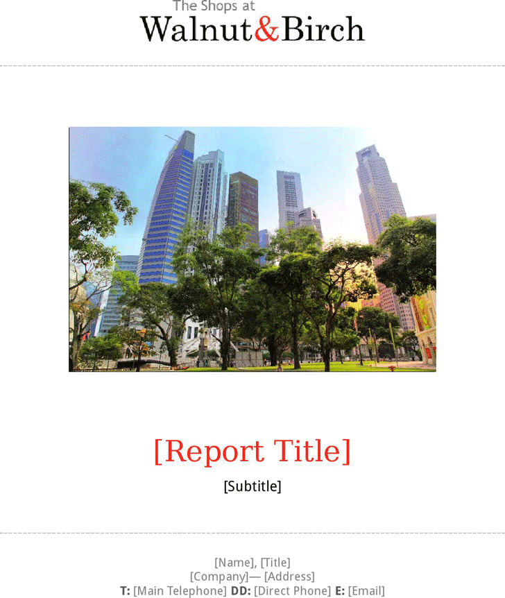 Business Report Template 1