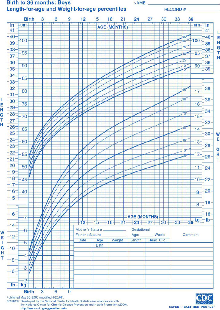Baby Growth Chart Templates  Download Free  Premium Templates