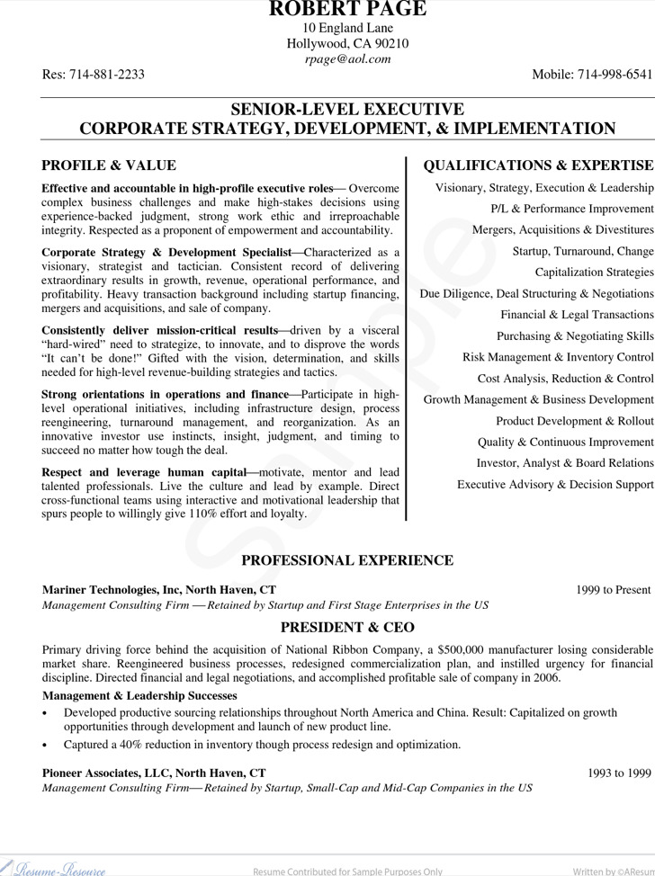 Ceo Resume Examples Sample Bio