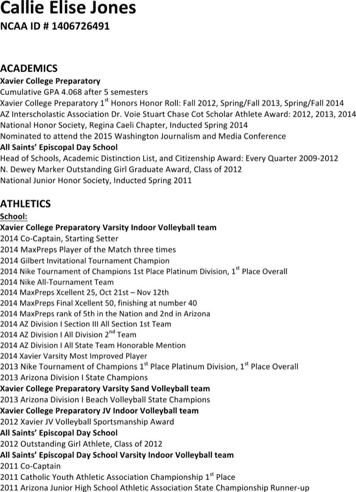 Classic Volley Ball Resume