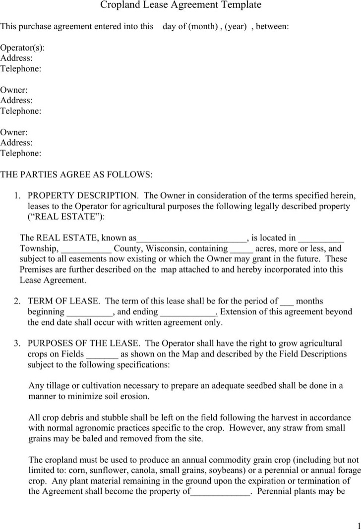 Lease Agreement Sample Lease Agreement Form Template Lease Owner