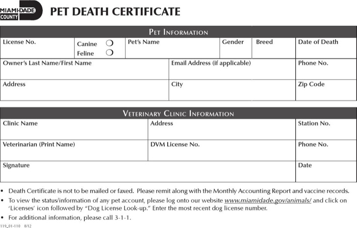 Death Certificate Template Baby Death Certificate Template Death