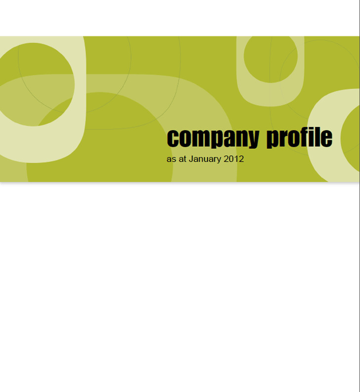 Company Profile Sample – Sample Company Profile Format in Word