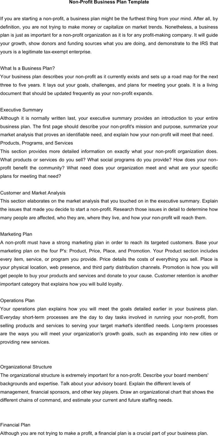 Editable Non Profit Business Plan Template Word Format Download