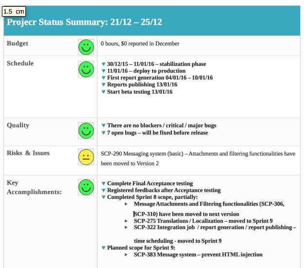 Editable Software Development Weekly Status Report Template