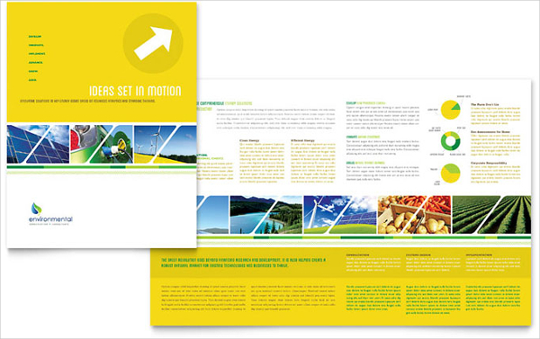 Environmental Conservation Brochure Template