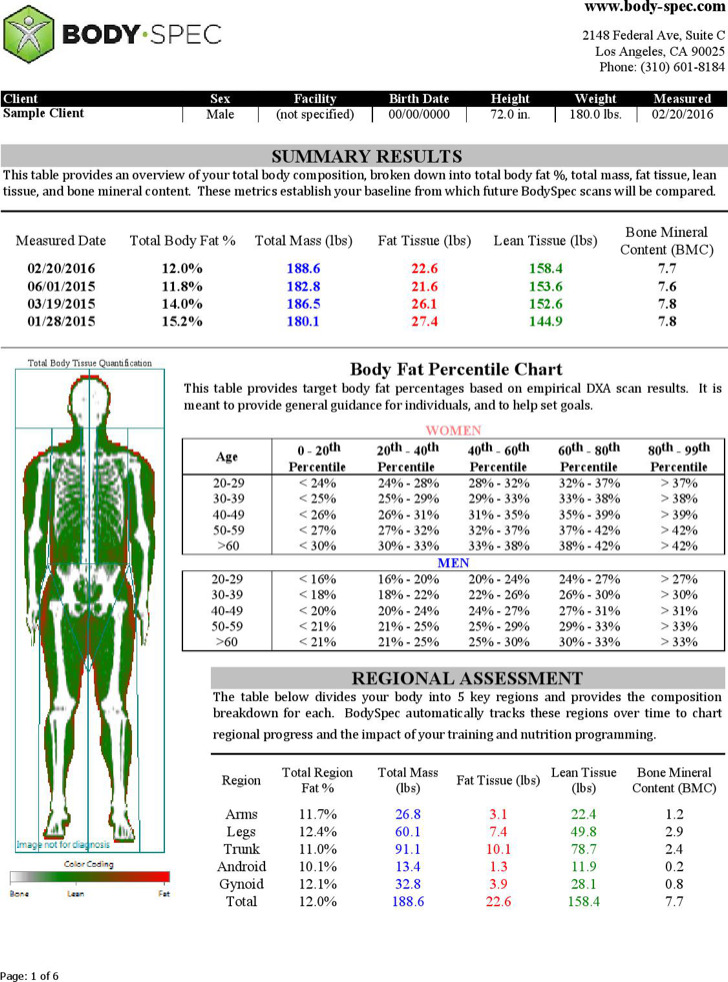 Example Body Fat Percentage Chart