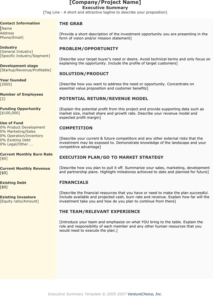 Executive Summary Template 3  Project Executive Summary Template