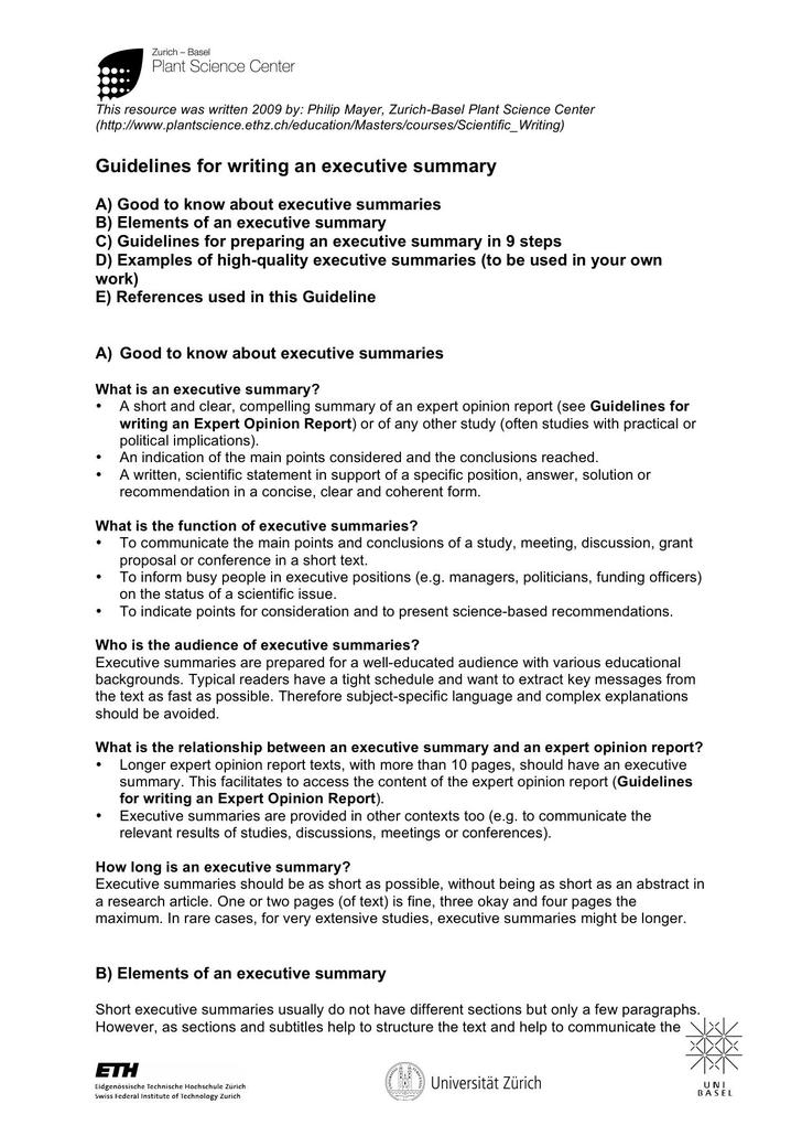 Executive Summary Template Structural Example PDF