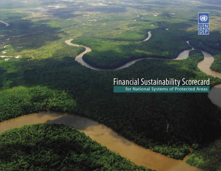 Financial Business Scorecard Template