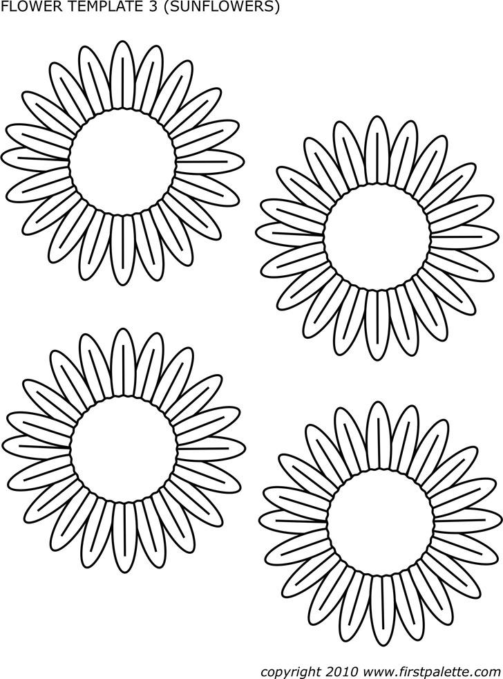 Flower Template of Sunflowers