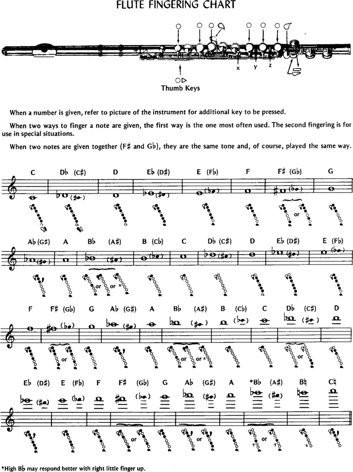 Flute Fingering Chart  Download Free  Premium Templates Forms
