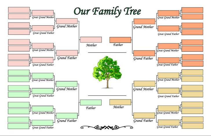 Blank Family Tree  Generation Blank Family Tree Template Blank
