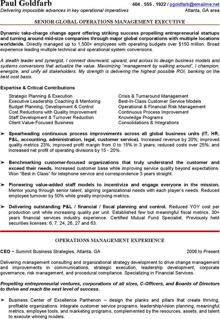 Ceo Resume Template  Download Free  Premium Templates Forms