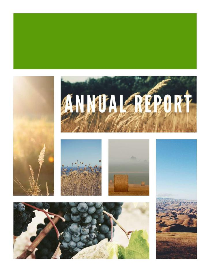 Free PDF Format Annual Report Template