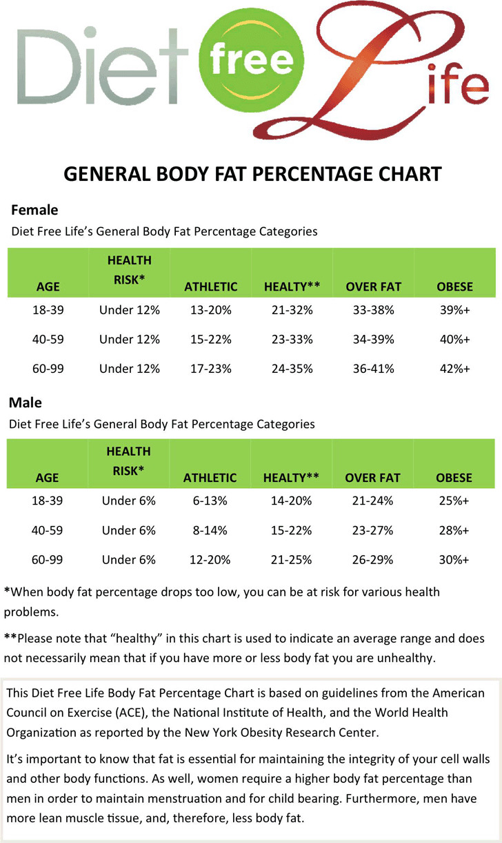 Body Fat Percentage Chart – Body Fat Percentage Chart Template