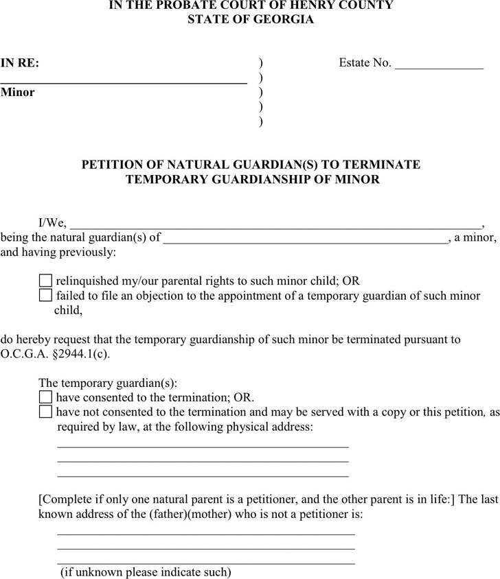 Georgia Guardianship Form 2