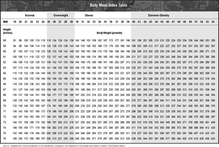 Height Weight BMI Chart Templates | Download Free & Premium ...