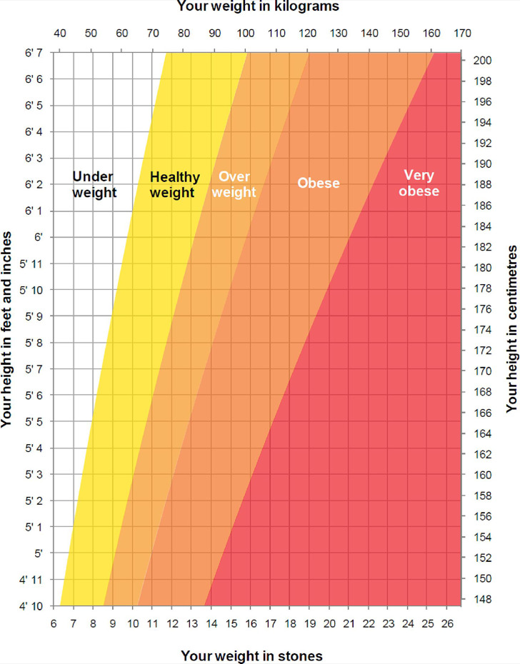 Height And Weight Chart Template For Men