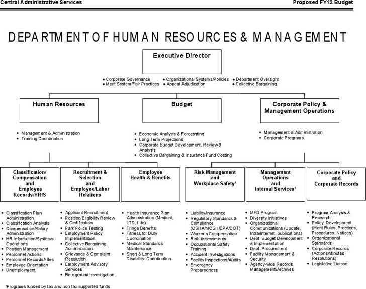 Human Resources Organizational Chart | Download Free & Premium