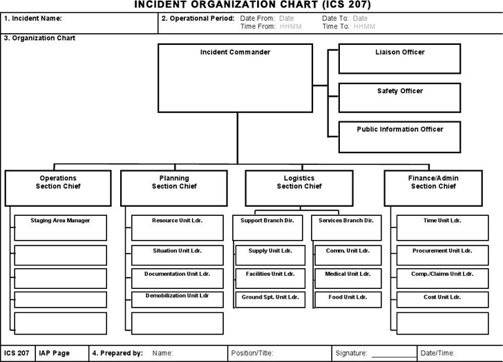 Ics Organizational Chart | Download Free & Premium Templates